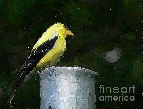 Impressionist Yellow Finch by Nancie DeMellia