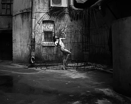 In A Cage by Zan Zibovsky