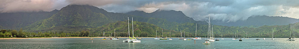 In a Land Called Hanalei by Megan Martens