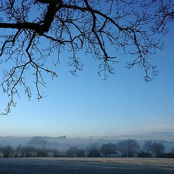 In a Mist by Anne Kotan