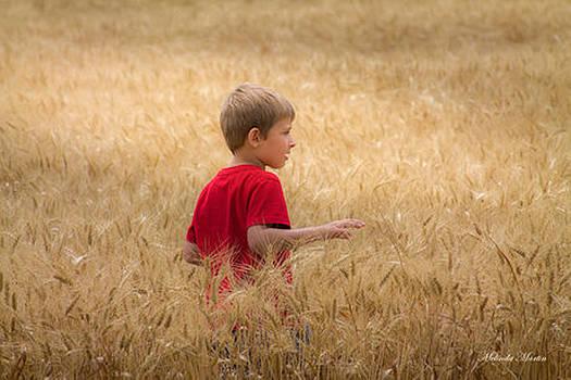 Melinda Martin - In Awe of Wheat