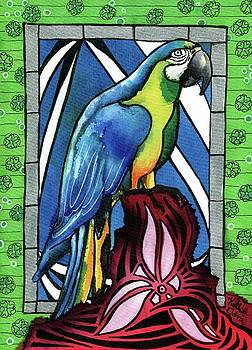 In Love With a Macaw by Dora Hathazi Mendes