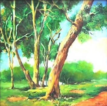 In Shade-a greenary of Andamans by Prakash Sree S N