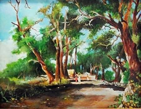 In Shade-a village road  by Prakash Sree S N
