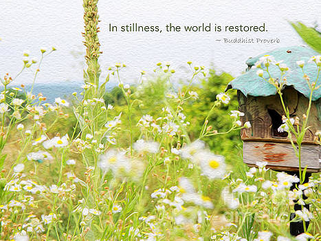 In Stillness by Joseph Re