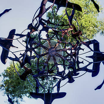 Chris Bordeleau - In the Center of Seven under Birds #2 - Tiny Planet