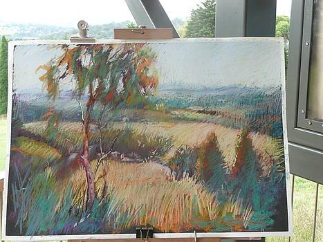 In The Field  by Pamela Pretty