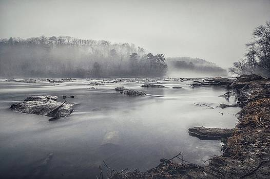 In the fog  by Mike Dunn