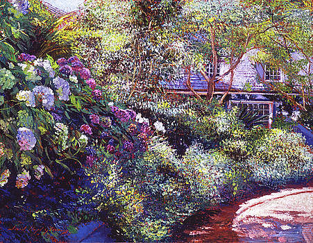 Malibu Hydrangeas by David Lloyd Glover