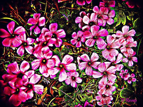 In the Garden by Leslie Revels