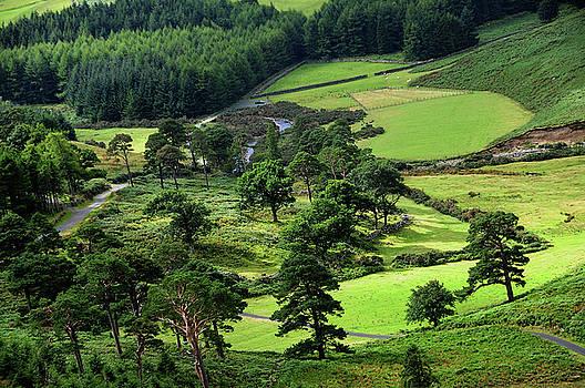 Jenny Rainbow - In the Heart of Emerald Valley. Wicklow. Ireland