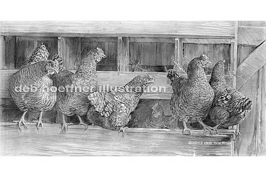 In The Henhouse by Deb Hoeffner