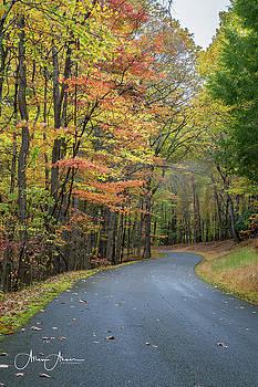 In the Hills of West Virginia by Allen Ahner