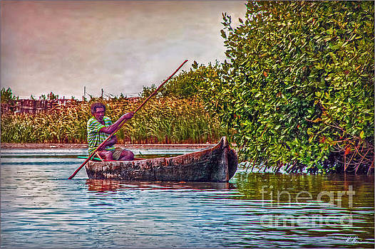 In the Mangroves by Hanny Heim