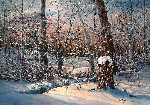 In the Midst of Winter by Maryann Boysen