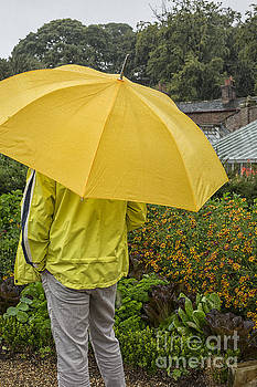 Patricia Hofmeester - In the rain