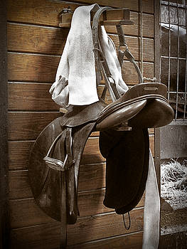 In the Saddle by Valerie Morrison
