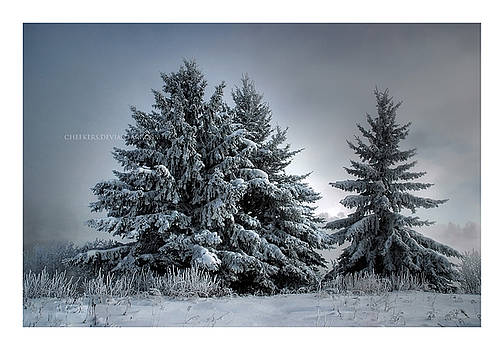 In The Spirit Of Winter by Heather  Rivet