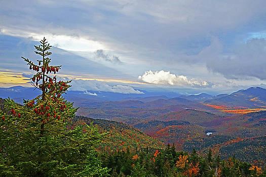 Toby McGuire - In the Spotlight Ray of Sun from Giant Mountain Keene Valley NY Adirondacks Pine Tree