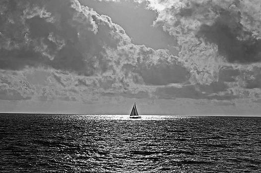 Toby McGuire - In the spotlight. Sailboat sailing in Naples Fl Black and White