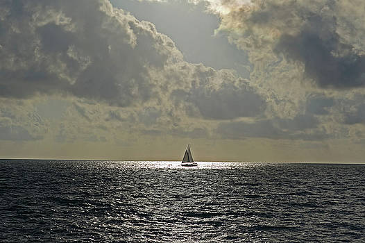 Toby McGuire - In the spotlight. Sailboat sailing in Naples Fl