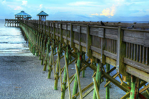 Carol Montoya - In Your Face Folly Beach Pier In Charleston South Carolina