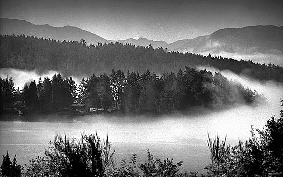 Incoming Fog East Sooke BC by Gregory Varano