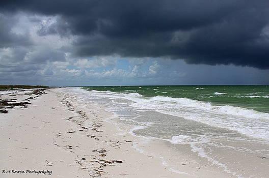 Barbara Bowen - Incoming Storm