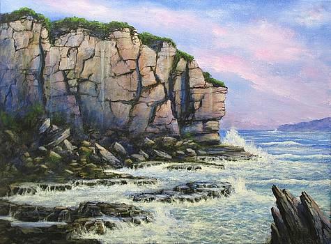 Incoming Tide by John Cocoris