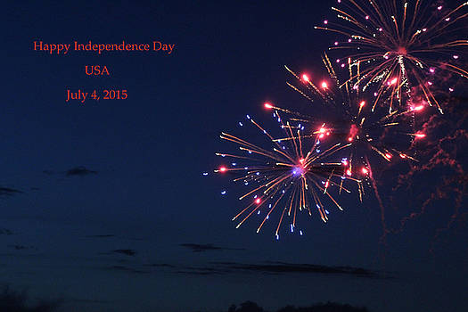 Independence Day Fireworks by Carolyn Ricks