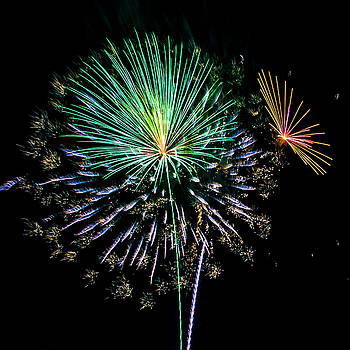 Paula Porterfield-Izzo - Bursts of Color Fireworks