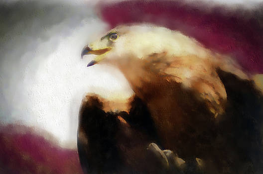 Independence Eagle by Barbara A Lane