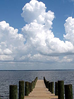 Indian Bluff Park on Lake Marion, S.C. 000 by Chris Mercer