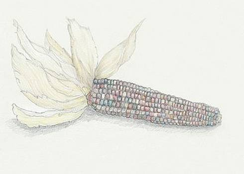 Indian Corn by Tara Poole