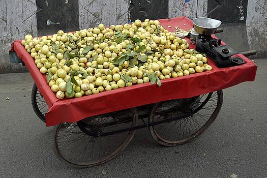 Bliss Of Art - Indian Guava Cart