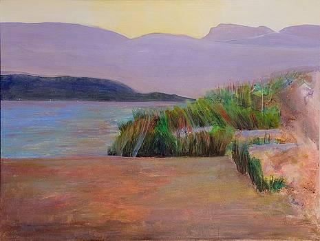 Indian Point Savary Island by Martine Bilodeau