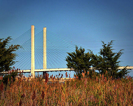Indian River Inlet Bridge Stanchions Standing Tall by Bill Swartwout