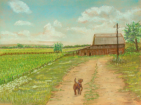 Indiana Farm by Dorothy Riley