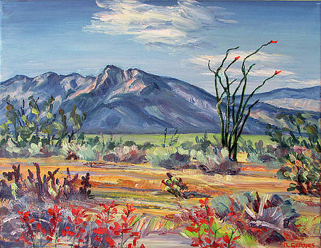 Indianhead Mt and Desert Floor in Spring, Borrego by Robert Gerdes