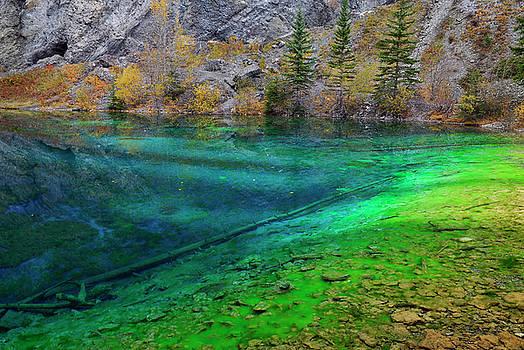 Reimar Gaertner - Indigo and bright green algae in the clear water of Grassi Lakes