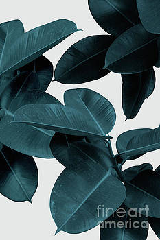 Indigo Blue Leaves by PrintsProject