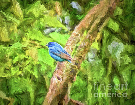 Indigo Bunting Abstract Art by Kerri Farley