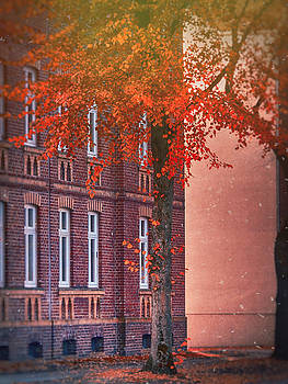 Industrial Autumn by Nicole Frischlich