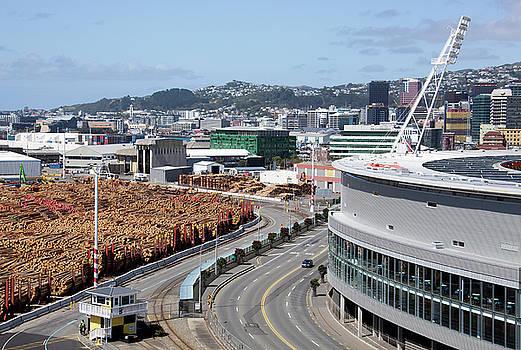 Ramunas Bruzas - Industrial Wellington