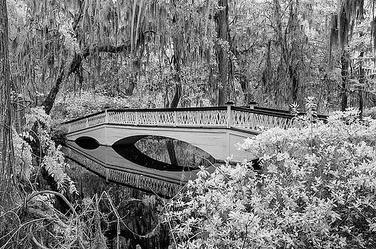 Infrared Bridge by Cathie Crow