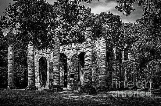 Infrared of Old Sheldon Church Ruins by Dale Powell