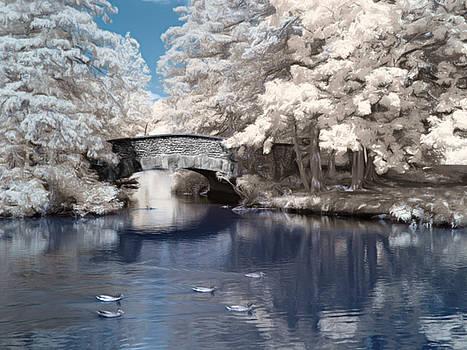 Infrared Bridge in Elizabeth Park in West Hartford Connecticut by Linda Ouellette