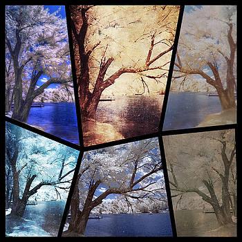 Infrared trees of Cedar Lake in Sturbridge, Massachusetts by Linda Ouellette