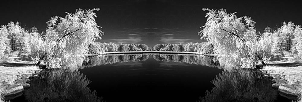 Infrared Reflections by Dick Pratt