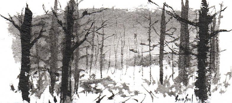 Ink Landscape 1 by Sean Seal